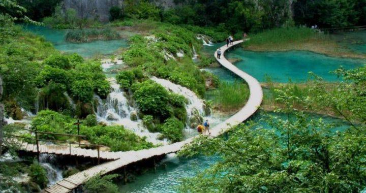 Прогулка в джунгли: Национальный парк Фукуока