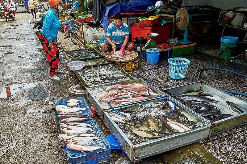 Морепродукты на дневном рынке