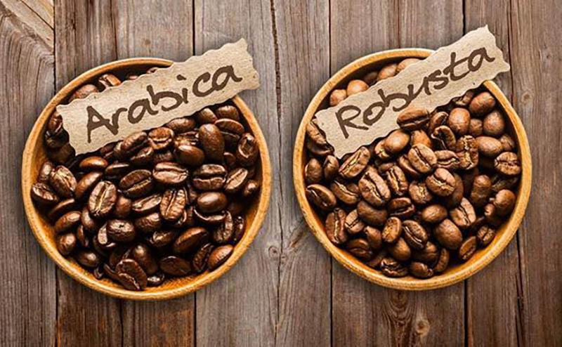 Где купить кофе на Фукуоке: цены, магазины и доставка