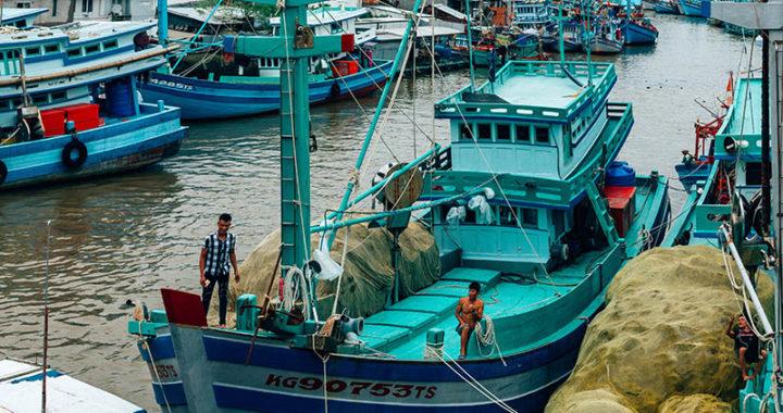 Морская рыбалка на Фукуоке: рыбалка с гидом, цены, отзывы