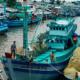 Морская рыбалка Фукуок: с гидом, цена, отзывы