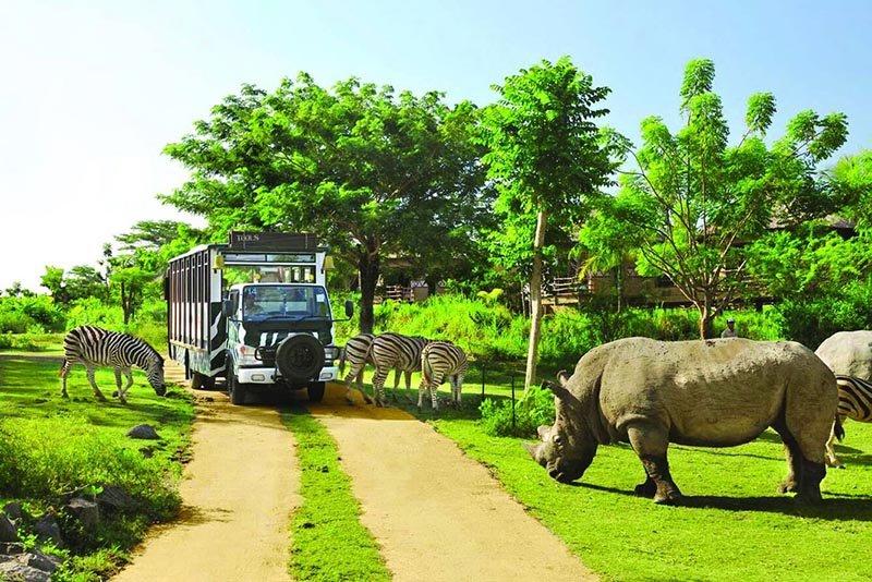 Зоопарк Фукуока: Vinpearl Safari Phu Quoc