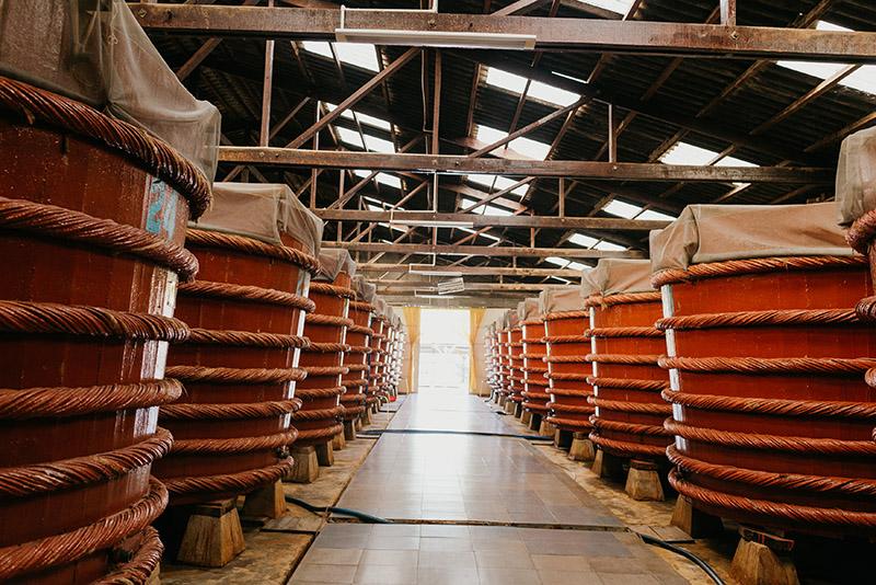 Рыбный соус на Фукуоке: обзор фабрики и как добраться?