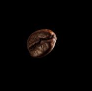 demo-attachment-28-coffee-beans-P4MXYZD2-1
