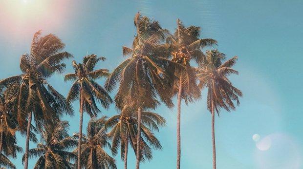 Погода в Дананге по месяцам